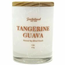 Scentsational Natural Soy Blend 11oz 1 Wick Medium Candle - Tangerine Guava