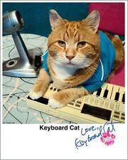 Keyboard Cat Autographed Glossy Head Shot (Bento)