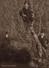 "Louis Guichard Photo ""Men In A Tree""  1937 Sepia Sheet Fed Gravure"