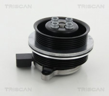 Wasserpumpe TRISCAN 860029062 für AUDI SEAT SKODA VW