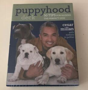 Cesar Millan Puppyhood Card Deck - 50 Tips for Raising the Perfect Dog - New,
