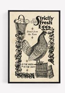 Vintage Chicken Eggs Hen Print Picture Wall Art Unframed Kitchen home Decor A4 1