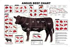 Angus Beef Chart Meat Cuts Diagram Poster 11x17 USA Seller