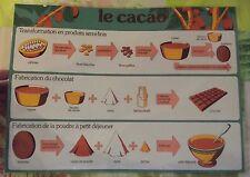 Objet de Métier Set de Table Décoratif Chocolatier Cabosse Chocolat Cacao Amande