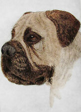 GEOFFREY LASKO - BULL MASTIFF - LISTED ARTIST ORIGINAL ETCHING - S&N - FREE SHIP