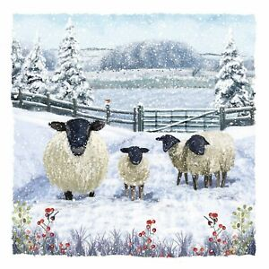 Charity Christmas Cards Pack of 10 Sheep Snow Scene Cold Winter Farm Festive