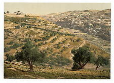 Siloam And The Tyrophean Valley Jerusalem A4 Photo Print