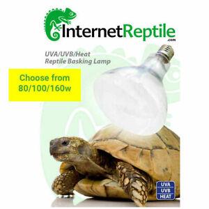Internet Reptile UV Basking Lamp - MVB Mercury Vapour Combined Heat UVB Bulb