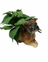 "Vintage Brown Boxer Dog Planter C6717 Napcoware 6.5"""