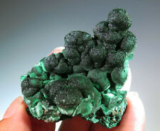 """2.1"""" Natural Malachite with Chrysocolla CRYSTAL Mineral Specimen  - Congo *0566"""