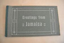 LOTTO 8 CARTOLINA GREETINGS FROM JAMAICA NON VIAGGIATE PRIMI DEL '900 SUBALPINA