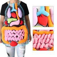Kids Anatomy Apron Human Body Organs Awareness Child Educational Insights Toys