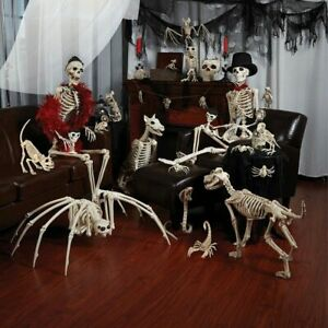 Skeleton Dragon Dog Animal Plastic Animal Bones Halloween Prop Horror Party