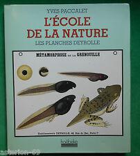 L'ECOLE DE LA NATURE LES PLANCHES DEYROLLE YVES PACCALET SCIENCES NATURELLES