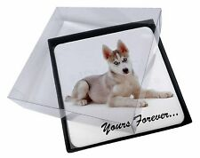 4x Husky 'Yours Forever' Picture Table Coasters Set in Gift Box, AD-H54yC