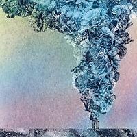 "Daughn Gibson : Carnation VINYL 12"" Album (2015) ***NEW*** Fast and FREE P & P"