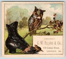 1880's LEWISTON MAINE*G W ELLARD & CO*SHOES*WISE OLD OWL*MICE*MOUSE*TRADE CARD