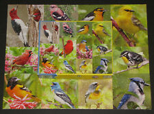 "SPRINGBOK PUZZLE ""BIRDS OF A FEATHER"" 500pcs BLUE JAY ORIOLE FINCH WOODPECKER -1"