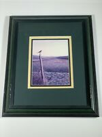 Framed Glen Scrimshaw Morning Glory Lithograph 1995 Canadian Artist