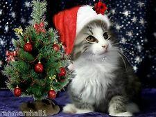 Set of 4 Kitten Cat Christmas Tree Greetings Stationery Notecards / Envelopes