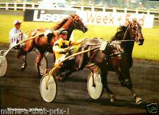 CARTE postale CPA publicitaire cheval PMU Vincennes Levesque courses de chevaux