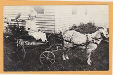 Real Photo Postcard RPPC - Girl in Goat Drawn Wagon Strawberry Point Iowa