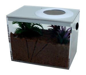 Ant Housing,Ant Farms Nano Size, Different Options Available