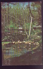 ALABAMA AL Theodore Bellingrath Gardens and Home Postcard
