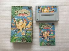 Joe & Mac, NINTENDO SUPER FAMICOM, NTSC Japan Jap 1991 59.99