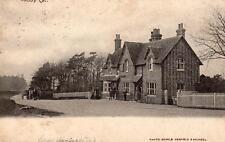 Tabby Cat Railway Station Inn ? Nr West Grinstead old pc used 1904 Searle