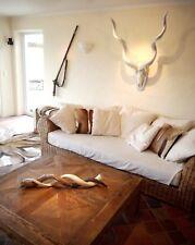Kudu Horn weiss Afrika Deko Kuhhorn Antilope