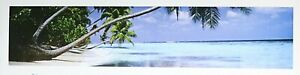 """Natures color Turquoise beach poster 12"""" X 36"""" NOS (b268)"""