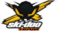 "#568 5"" Ski-Doo SkiDoo Bee Decal Sticker Team Racing Snowmobile"
