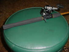 Penn Master 170 Reel / 6' 1Pc Roddy Gator Tail Combo
