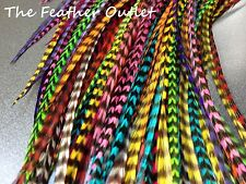Lot 10 Feather Hair Extensions Bulk Wholesale Natural Real Colors ALL GRIZZLY