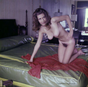 Bunny Yeager 1970s Pin-Up Color Transparency Pretty Nude Brunette Model Sultry