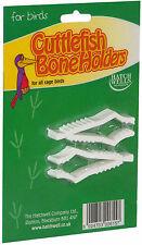 Hatchwell Cuttlefish Bone Holders