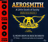 AEROSMITH - A LITTLE SOUTH OF SANITY SPECIAL EDITION CD SINGLE SPAIN PROMO 2 TRA