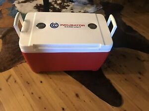 Large Portable Incubator puppy kitten litter 12 110v digital thermostat car home
