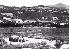 1932 ASTI-SONOMA ITALIAN SWISS COLONY WINERY&WINE BOTTLE CHURCH~ANTIQUE NEGATIVE