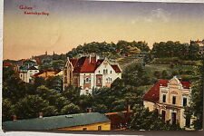 14021 AK GUBEN Kaminskys Berg 1919