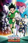 Hunter X Hunter - Manga / Anime TV Show Poster (Key Art / Running)