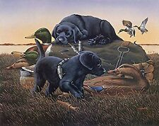 Duck Hunting Picture Titled Dog Days Black Lab Puppies and Mallard Ducks