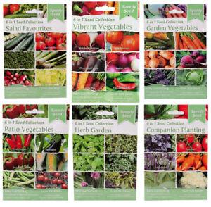Vegetable Seeds - Mixed Packs - Cucumber, Tomatoes, Carrots, Pepper - UK seller