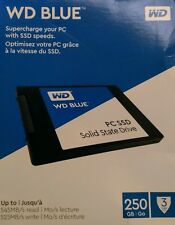 WD - Blue 250GB Internal SATA SSD 6GB/s (WDBNCE2500PNC-WRSN)