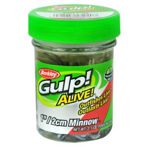 "Berkley Gulp Alive Scented Minnow Soft Bait 1"" Black Shad 2.10 Oz JarGAJMI1-BS"