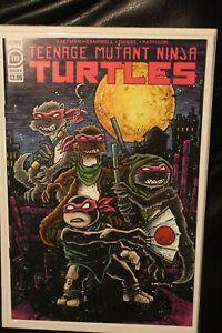 TEENAGE MUTANT NINJA TURTLES #119 KEVIN EASTMAN VARIANT TMNT IDW COMICS 2021