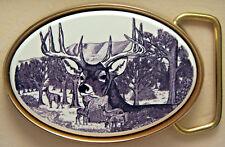 Traditional Deer Portrait 590696 n Belt Buckle Deer Barlow Photo Reproduction