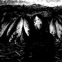Suzie Stapleton - We Are The Plague (NEW CD)