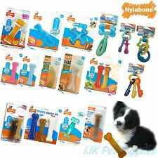 Nylabone Puppy Teething Dental Chews